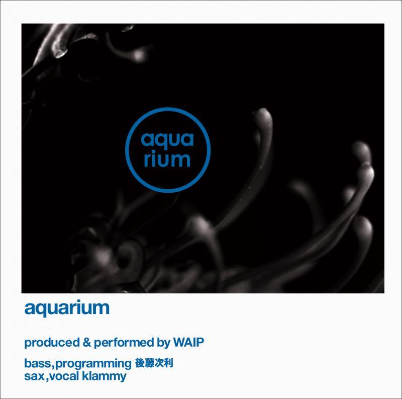 waip aquarium tutinok online store